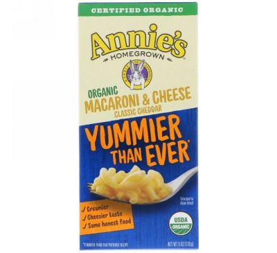 Annie's Homegrown, Organic Macaroni & Cheese, Classic Cheddar, 6 oz (170 g)