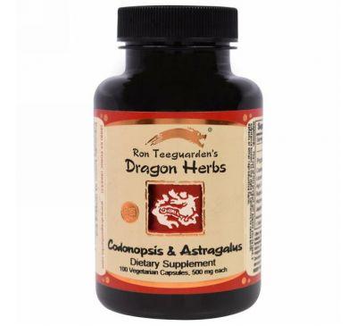 Dragon Herbs, Женьшень и астрагал, по 500 мг каждого, 100 капсул