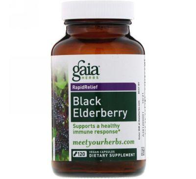 Gaia Herbs, Черная бузина, 120 веганских капсул