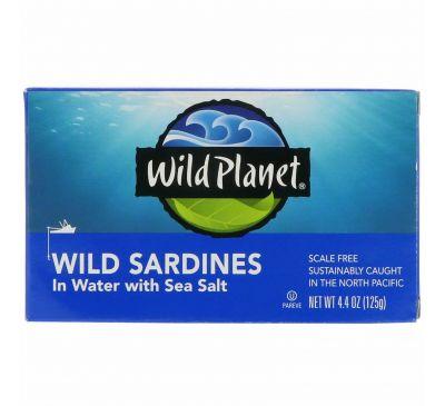 Wild Planet, Дикие сардины в жидкости с морской солью, 4,4 унции (125 г)